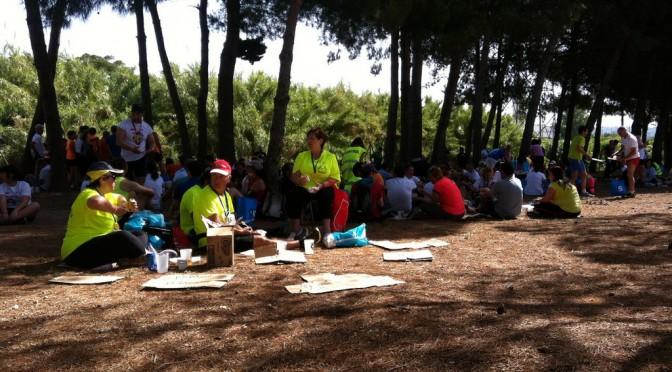"<span lang =""es"">II Cursa Solidaria Martorell</span>"