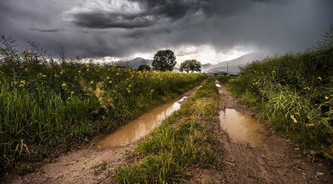 """<span lang =""""es"""">Primer entreno después maratón: viento, lluvia y posible lesión</span>"""