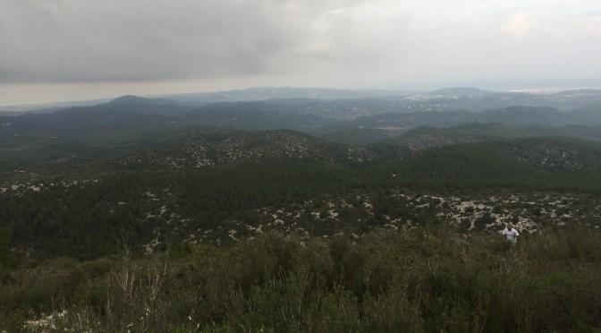 Cursa d'Olesa de Bonesvalls